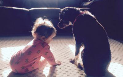 Babies and Puppies: How to Keep Your Sanity