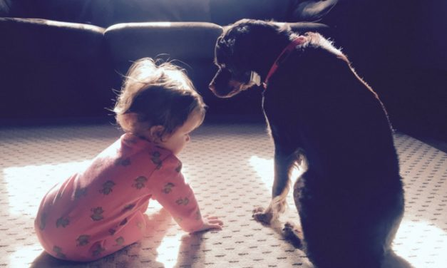 Babies and Puppies: How to Keep YourSanity