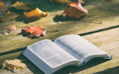 Living in the New Reality: An Exegetical work on Colossians 3:1–11