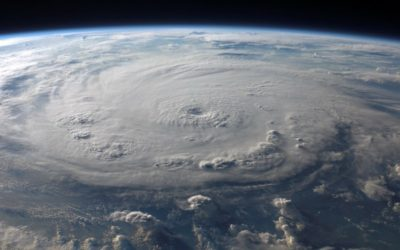 4 Steps for a Mindful Life (Lessons I Learned from a Hurricane)