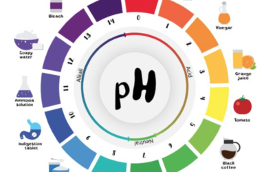 Understanding your pH is a game changer!