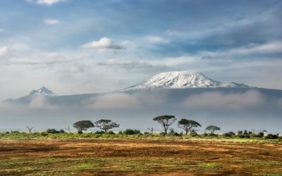 This is What Happens When You Climb Kilimanjaro – the Tallest Mountain in Africa