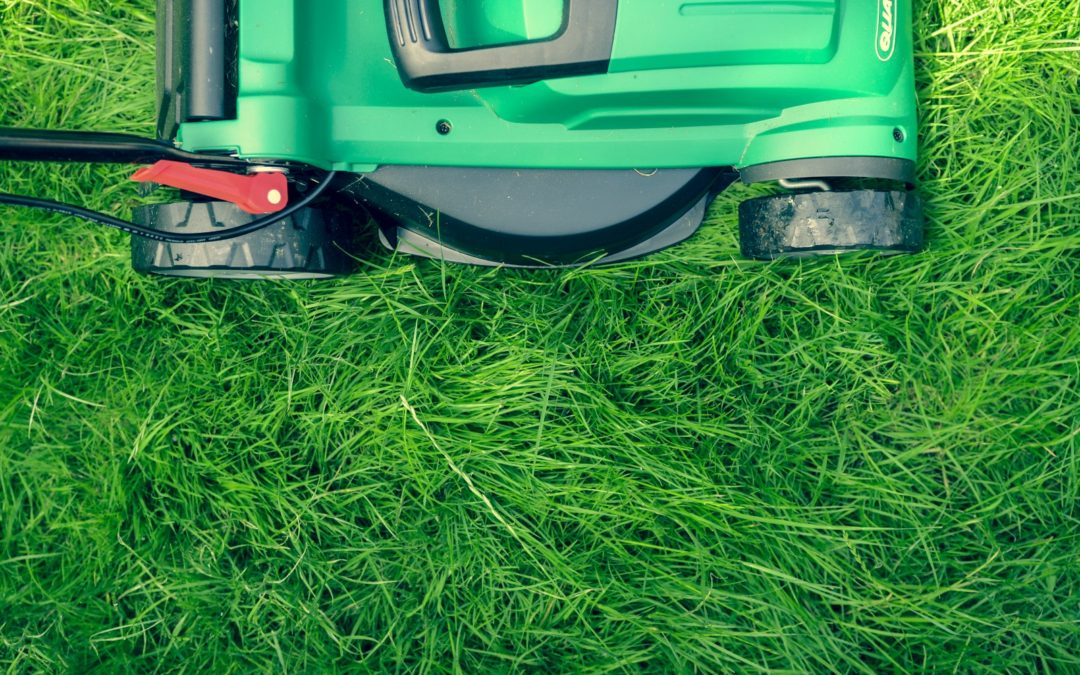 At 65+: How to Unlock The Genuine Value of Lawn Mowing
