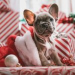 5 Ways to Beat Depression During the Holidays