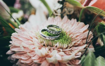 Lessons From My Three Weddings