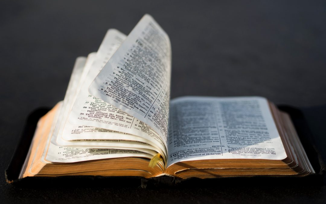 What Excuses Do You Make For Not Reading Your Bible Daily?