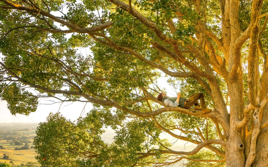 Life Lessons from Jesus and Zacchaeus